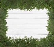 Nätta gröna Cedar Limbs och visare som lägger på sidor som omger ramen på den lantlig vit målade brädebakgrundsväggen arkivfoto