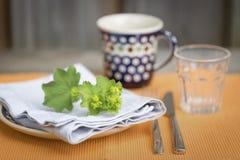 Nätta gröna delikata blommor på en servett Royaltyfria Bilder