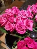 Nätta lilor och röd blomma royaltyfria bilder