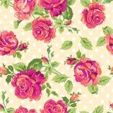 Nätta rosa rosor Arkivbilder