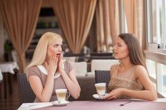 Nätta unga flickor skvallrar i kafeteria Royaltyfri Foto