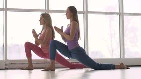 Nätta unga kvinnor i bekväma sportar som beklär göra yoga arkivfilmer