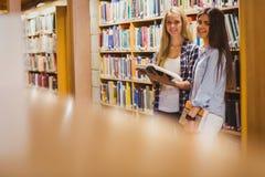 Nätta unga studenter som arbetar samman med boken Royaltyfri Foto