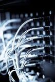 nätverk Arkivbilder