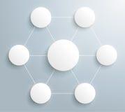 Nätverk för Infographic rastrerat cirkelsexhörning Arkivbild