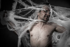 Nätverk. man tilltrasslad i enorm vit spindelrengöringsduk Arkivbilder