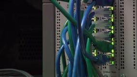 Nätverkskablar arkivfilmer