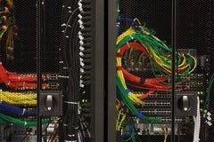 Nätverkskablar av en server Royaltyfri Bild