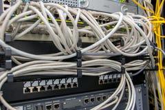 Nätverkskablar i kontaktdonet royaltyfria foton