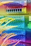 Nätverkskablar och serveror Arkivfoto
