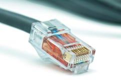 nätverksplugins arkivbild