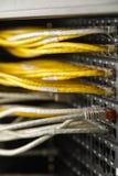 Nätverksströmbrytare och Ethernetkablar Royaltyfri Foto