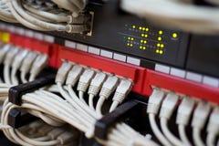 Nätverksströmbrytare och förbindelseEthernetkablar Arkivfoto
