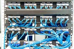 Nätverksströmbrytare och UPT-Ethernetkablar Arkivfoto