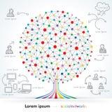 Nätverksträd Arkivbilder