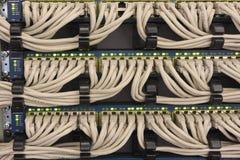 NätverksUTP kablar förbindelse till routersna Royaltyfri Fotografi