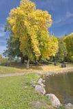 Nävetecknet av Autumn Blue Lake parkerar ELLER royaltyfri bild