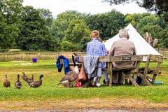 Någonsin hoppfullt, Baddesley Clinton Gardens, Warwickshire Royaltyfria Bilder