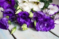 Några blommor i trädgården arkivfoton