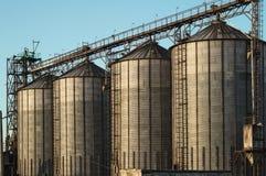 Några cylindriska konstruktionshissar för stort industriellt järn som står en efter andra, för jordbruks- lagring royaltyfria bilder