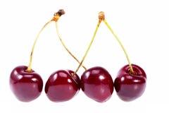 Några frukter av den röda körsbäret som isoleras på vit bakgrund Arkivfoto