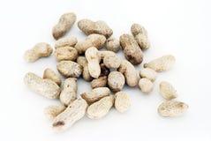 Groundnuts Arkivbild