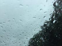 några personer går i regnet, andra precis får wet-//rogermjölnaren Royaltyfri Foto