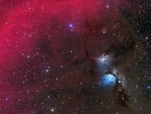 Nébuleuse de réflexion M78 en Orion Images libres de droits