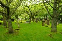 Nécropole à Inverness Images libres de droits