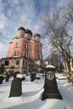 Nécropole et cathédrale de monastère de Donskoy Images libres de droits