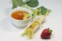 Néctar de la miel del tilo Fotos de archivo