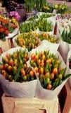 Néerlandais Tulip Stand au marché de fleur Image libre de droits