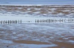 Néerlandais Waddenzee près de Noordkaap à Groningue photos stock