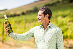 Négociant en vins de sourire regardant la bouteille de vin Images stock