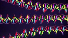 Néon colorido luz-como a costa torcida do ADN feita do vidro e do metal ilustração stock