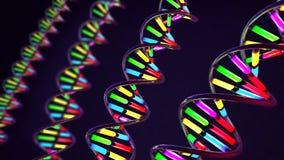 Néon colorido luz-como a costa torcida do ADN feita do vidro e do metal ilustração do vetor