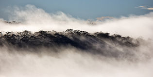 Névoa azul da montanha Fotos de Stock Royalty Free