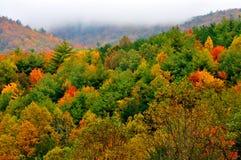 A névoa cobre uma montanha em cores da queda Fotografia de Stock