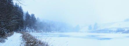 Névoa congelada da lagoa Imagens de Stock