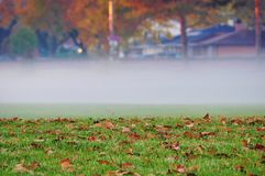 Névoa da manhã do outono na cidade foto de stock royalty free