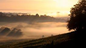 Névoa da manhã em Milton Imagem de Stock