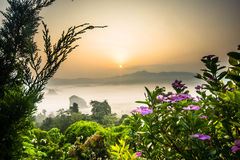 Névoa da manhã em Phu Lang Ka, Tailândia Fotografia de Stock Royalty Free