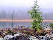 Névoa da manhã em um lago da montanha. Fotografia de Stock
