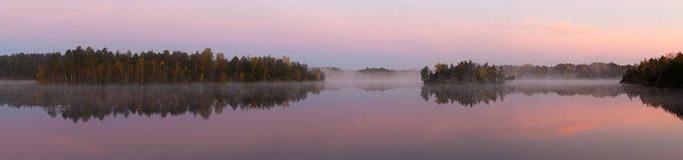 Névoa da manhã no lago de madeira Fotos de Stock