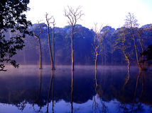 Névoa da noite do lago Clumber foto de stock