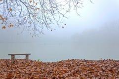 Névoa do outono Fotos de Stock