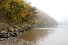 Névoa do outono sobre Danube River Imagem de Stock