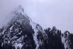 Névoa do pico de montanha da neve, passagem Washington de Snoqualme Imagem de Stock