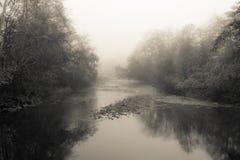 Névoa do rio de Nehalem fotos de stock royalty free