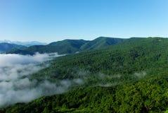 Névoa do verão do céu da floresta da paisagem da montanha Foto de Stock